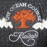 ocean_course
